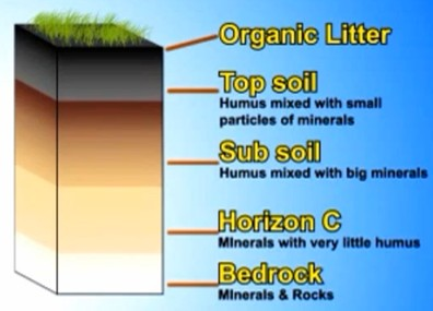 Related keywords suggestions for soil formation for Soil formation